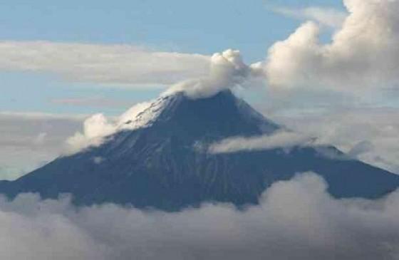 1000 companias ecuador:
