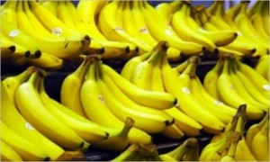 principales-bananeras-ecuadortimes-ecuadornews