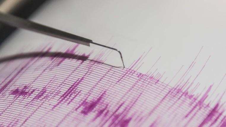 sismos-ecuadortimes-ecuadornews