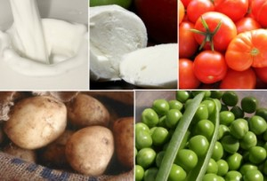 decreto_importacion_productos_agro_ini