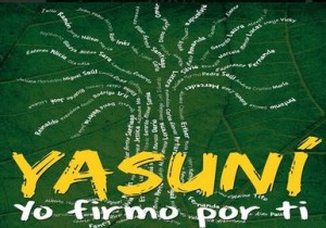 Yasunidos-CIDH-suspender-actividades-petroleras