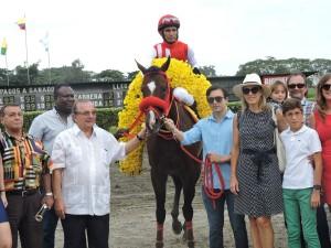 Mimo-horse-caballo-ecuatoriano-ecuadorian-alvaro-noboa