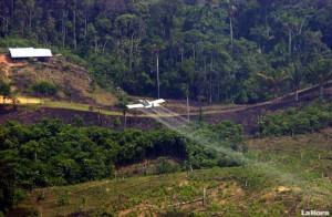 colombia-fumigacion-frontera-ecuador