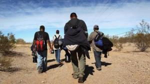 migracion-ilegal-andes