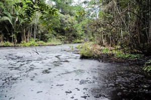The report of the Comptroller revelas severe damage in areas where Chevron operated.
