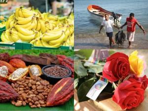 exportar-Ecuadortimes-Ecuador news-Noticias de Ecuador