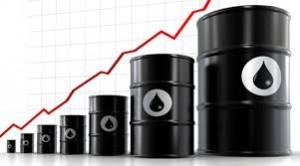 petroleosubio-ecuadortimes-ecuadornews