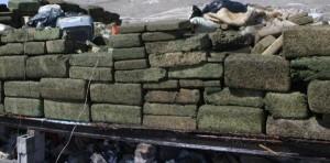 A ton of marijuana was seized in Esmeraldas, northern Ecuador.