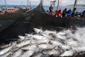 Tuna, shrimp and coffee have reduced their international sales.